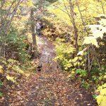 Casque Isles Trail